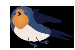 Oiseau hirondelle